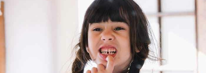 ¿Qué tipos de dientes tenemos y Cuáles son sus funciones?